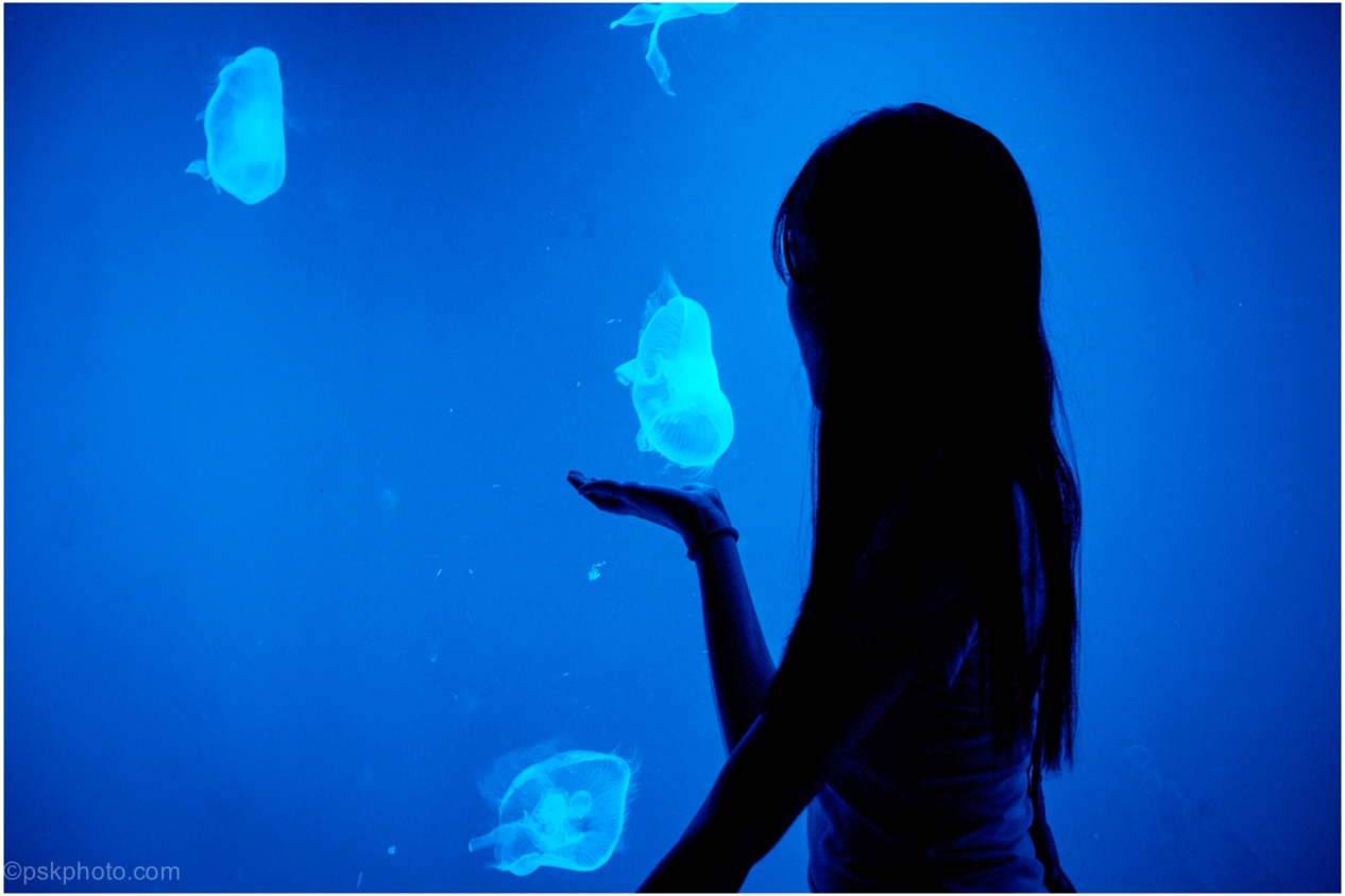 A girl poses for a photograph with jellyfish at the amazing Siam Paragon Aquarium. Bangkok, 2015